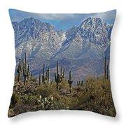 Snow On Four Peaks Arizona No Snow On Saguaros Throw Pillow