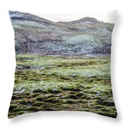 Snow On Moss Throw Pillow