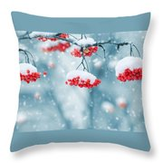 Snow On Red Berries Throw Pillow