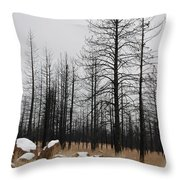 Snow On Rocks Throw Pillow