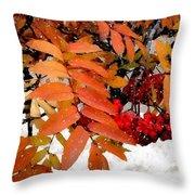 Snow On Scarlet Magick Throw Pillow