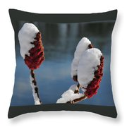 Snow On Sumach Throw Pillow