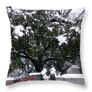 Snow On The Graves Throw Pillow