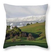 Snow On The Great Western Tiers, Tasmania Throw Pillow