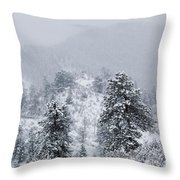 Snow On The Ridge In The Pike National Forest Throw Pillow