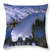 Snow Ornament - Joshua Tree Throw Pillow