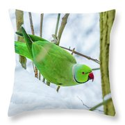 Snow Parrot Throw Pillow