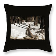 Snow Paths And Winter Shadows Throw Pillow