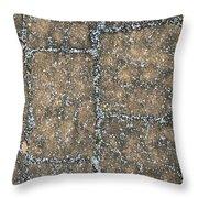 Snow Pellets Throw Pillow