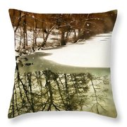 Snow Pond Throw Pillow