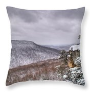 Snow Remoteness Throw Pillow