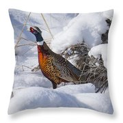 Snow Rooster Throw Pillow