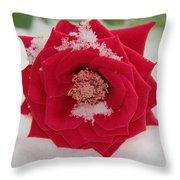 Snow Rose Throw Pillow
