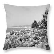 Snow Settles On The Lake Shore Throw Pillow