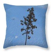 Snow Sleeper Throw Pillow