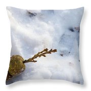 Snow Sprouts Throw Pillow