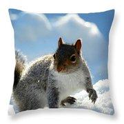 Snow Squirrel Throw Pillow