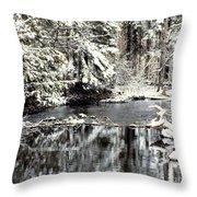 Snow Stream Throw Pillow
