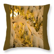 Snow The Day After Throw Pillow