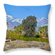 Snow-topped Mountains From Tahquitz Canyon Way In Palm Springs-california  Throw Pillow