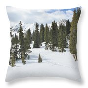 Snow Trail Throw Pillow