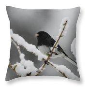Snow Watcher Throw Pillow