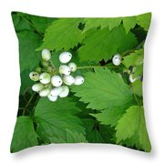 Snow White Berries Throw Pillow