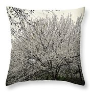Snow White Flowering Tree Throw Pillow