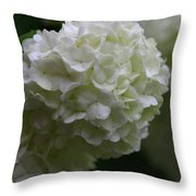 Snowball Bush Throw Pillow