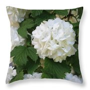 Snowball Tree With Delicate Leaves Throw Pillow