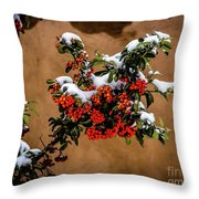 Snowberries Throw Pillow