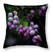Snowberry 5191 H_2 Throw Pillow
