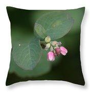 Snowberry Blossom Throw Pillow