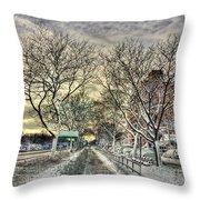 Snowbound Throw Pillow