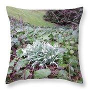 Snowdrop Glade Throw Pillow