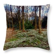 Snowdrop Woods 2 Throw Pillow