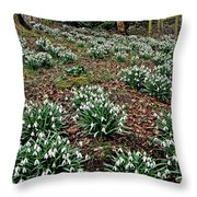 Snowdrops In Spring Woodland Throw Pillow