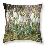 Snowdrops In The Garden Of Spring Rain 1 Throw Pillow