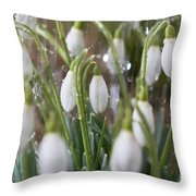 Snowdrops In The Garden Of Spring Rain 5 Throw Pillow