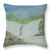Snowfall In The Valley Throw Pillow