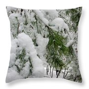Snow Covered Branches Throw Pillow