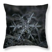 Snowflake 2 Of 19 March 2013 Throw Pillow by Alexey Kljatov