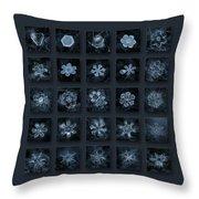 Snowflake Collage - Season 2013 Dark Crystals Throw Pillow by Alexey Kljatov