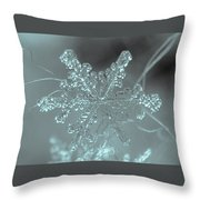 Winter's Perfect Gift Throw Pillow