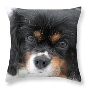 Gentle Snow Throw Pillow
