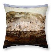 Snowflection Throw Pillow
