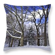 Snowman In Central Park Nyc Throw Pillow