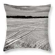 Snowmobile Tracks On China Lake Throw Pillow