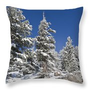 Snowscape 2 Throw Pillow