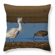 Snowy And The Gull Throw Pillow